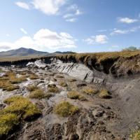 Permafrost thaw slump