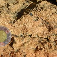 Rock with Toonie for scale