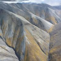 From helicopter looking down & across. Eroded mountains with smooth tops, gullies; silvery grey on upper slopes, yellow-green with vegetation on lower slopes, intermittent resistant bands describe open folds. Sliver of sky is darkly cloudy.