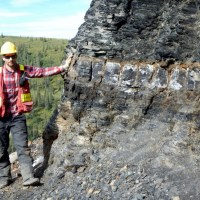 Canol Formation shale, Arctic Red River East. (Credit: Jonathan Rocheleau)