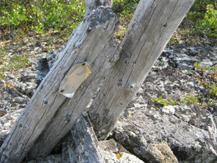 Post showing claim marker.