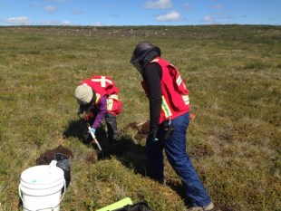Erika Cayer (M.Sc.) and Rachel Hanson (B.Sc) soil sampling at the DO-18 Kimberlite.