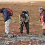 geologist on the tundra looking at rocks